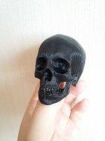 Skullbone.jpg