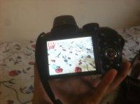 photoap.jpg