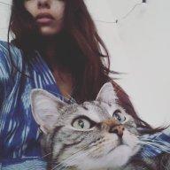 Mad_Kat