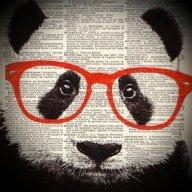 Panda Rangers