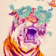 Sprinkle Tiger