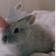 Sailor-Bunny
