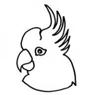 l'atelier du Perroquet